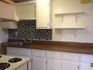 Spacious one bedroom, next to Marine Institute and CNA