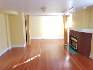1 bedroom suite, large, bright, in a great area.