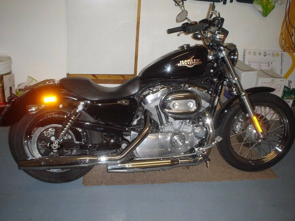 Beautiful 2008 Harley 883 Sportster ( Low)