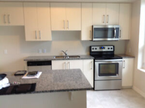 Brand New Three Bedroom Condo for Rent with One Parking Spot