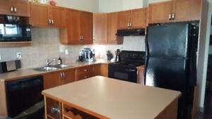 Spacious,sunny, close to schools, 15 min to d/t,garage