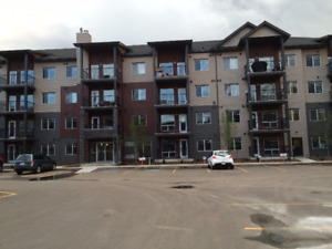 Newly Built Condo for rent in Eaux Claires (North Edmonton)