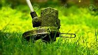 Lawn Cutting and Snow Removal Position Available