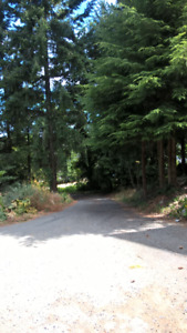 Subdivision Pending 4 Single Family Home Lots
