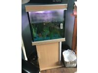 Square fish tank with stand