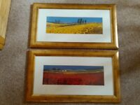 Two print picture scenes in gold modern frames, poppies and sunflowers