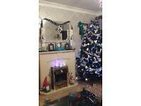 6ft BLACK CHRISTMAS TREE