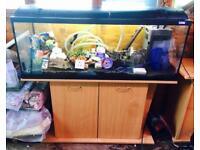 Fluval 4ft Fish Tank Aquarium & Stand