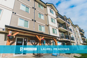 Pet friendly 1 Bedroom apartment w in-suite laundry SE Edmonton
