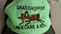 Grasshopper snowblowing