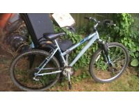 LADIES OR GIRLS RALEIGH MOUNTAIN BIKE