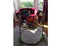 Rainforest Jumperoo - Excellent condition. Complete with box
