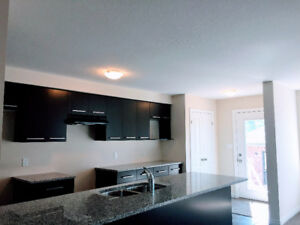 Brand new 4+1 bedroom  in desirable south Guelph