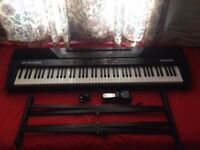 M-Audio Accent 88 Key!!! **Sustain Pedal & Stand** no ONO