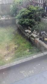 Wanted garden work