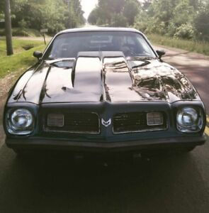 1975 Pontiac Firebird for SALE! Excellent condition!