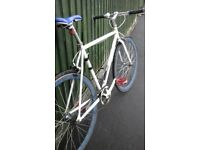 raleigh large 22 inch fixie bike