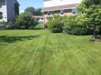 Lanes Lawn Care and property maintenance  902 580 0272