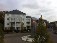 1 bedroom flat in REF:1201 | Sierra Road | High Wycombe | HP11