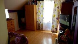 Big double room to rent