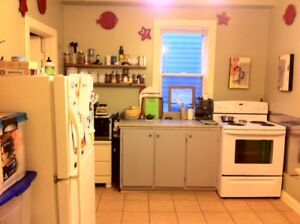 1 Bedroom Flat Avail September 1 Trendy Agricola Street