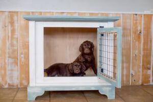 Custom kennel for medium dog