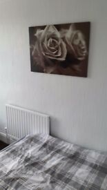 room to rent wolverhampton