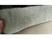 Carpet roll end sale 2.45m x 4m