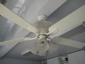 Ceiling fan/Light and table lamp