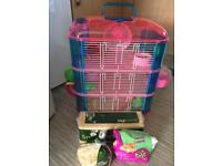 Boy Hamster, cage & extras for sale