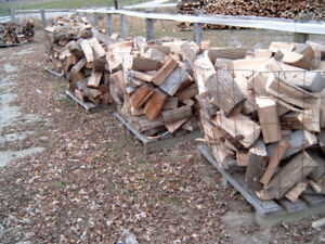 TOP QUALITY FIREWOOD FOR SALE !!