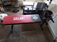 Gallant Workout Bench