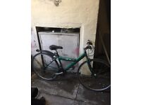 Blue bmx, y frame series eiger women's mountain bike and purple kalin mountain bike