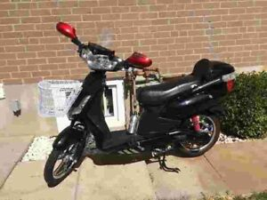 Electric Bicycle (brand new battery)