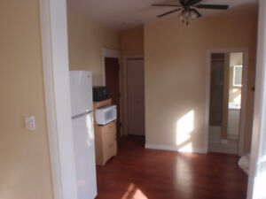 Downtown furnished bachelor all inclusive
