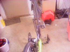 Giant race bike almost new