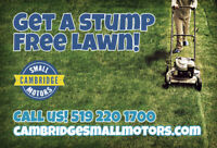 STUMP REMOVAL FROM CAMBRIDGE SMALL MOTORS