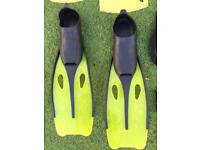 Wetsuit, boots, gloves and fins
