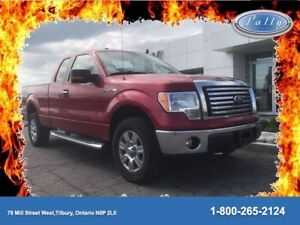 2012 Ford F-150 XLT, Ecoboost, Chrome Boards, Local trade!