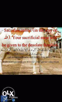 Sacrifice(qurbani) online.( In the way of Allah).