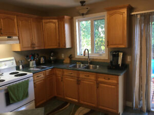 Kitchen Counter Top and Cabinets For Sale - Very Good Condition!