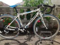 RALEIGH AIRLITE PURSUIT ROAD BIKE --can deliver
