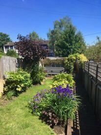 Studio Garden Flat in Maidstone