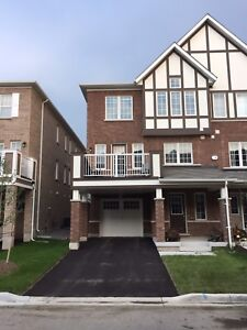 Mattamy built 3 Bedrooms Townhouse for Lease in Milton