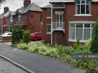 3 bedroom house in Shore Avenue, Oldham, OL2 (3 bed)
