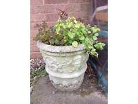 Beautiful stone planter