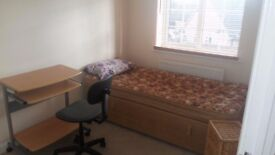 Single room to rent / 350 £ pm