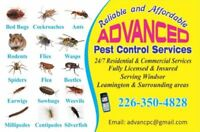 ADVANCED PEST CONTROL SERVICES, ONLY IN $125 WITH 1 YR WARRANTY