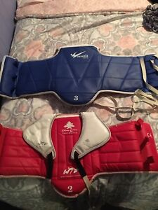 Taekwondow/MMA gear. Buy all or separate, great condition!