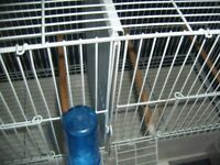 2 stacking bird cages